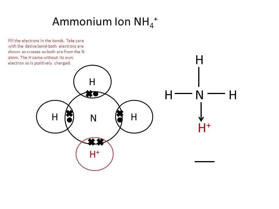H H N H H+ Ammonium Ion NH4+ H N H H H+