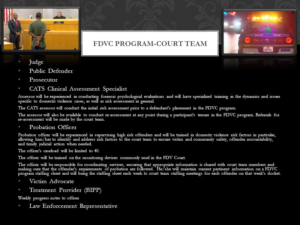 FDVC Program-court team