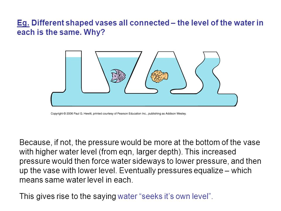 Eg. Different shaped vases all connected – the level of the water in each is the same. Why