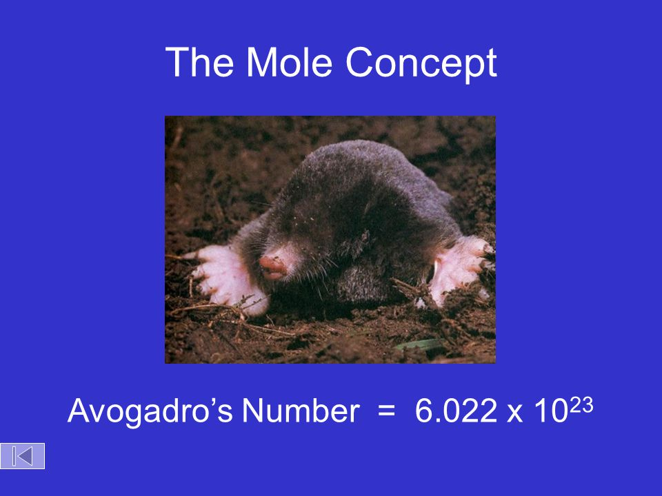 The Mole Concept Avogadro's Number = 6.022 x 1023 Objectives: