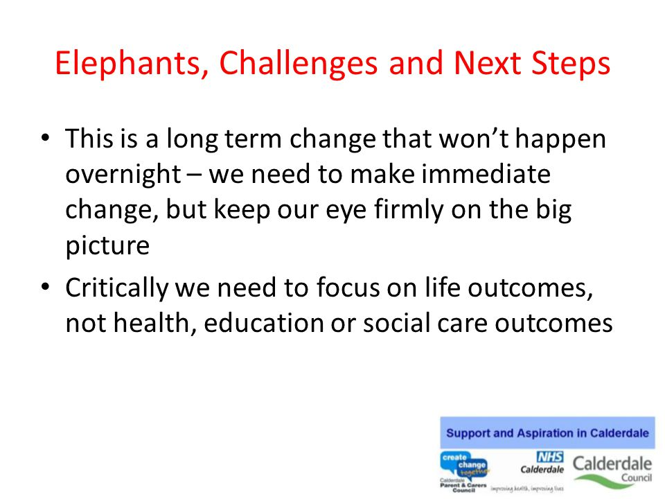 Elephants, Challenges and Next Steps