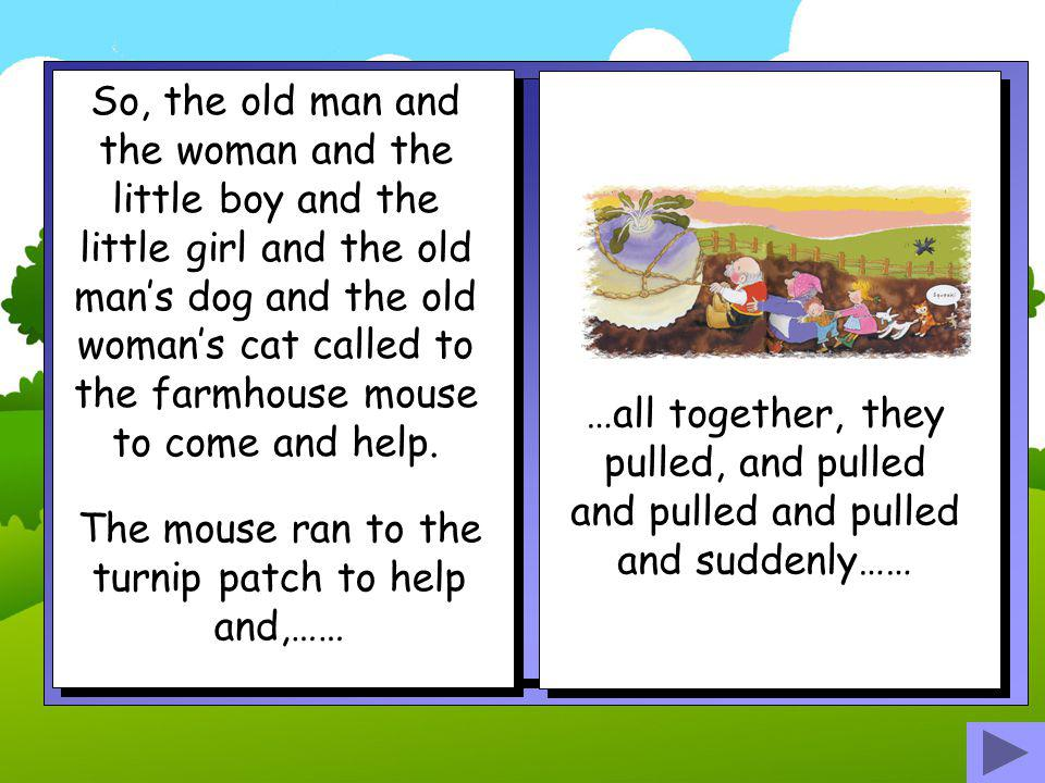 The mouse ran to the turnip patch to help and,……