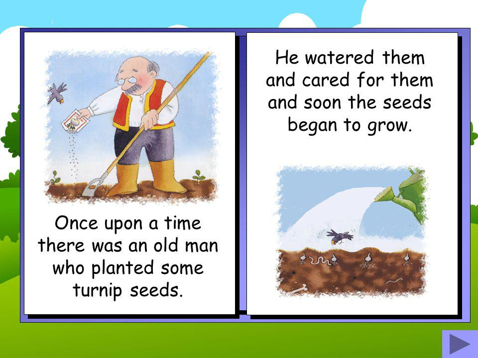 He watered them and cared for them and soon the seeds began to grow.