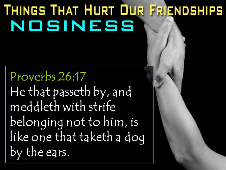 NOSINESS Proverbs 26:17 He that passeth by, and meddleth with strife belonging not to him, is like one that taketh a dog by the ears.