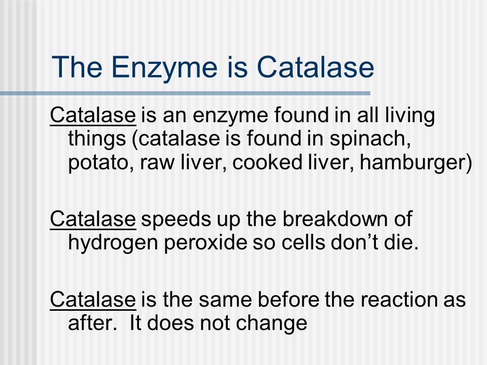 The Enzyme is Catalase Catalase is an enzyme found in all living things (catalase is found in spinach, potato, raw liver, cooked liver, hamburger)