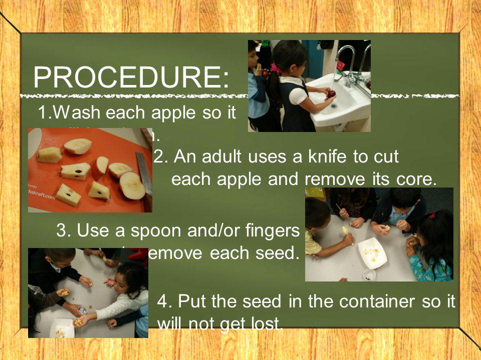 PROCEDURE: 1.Wash each apple so it will be clean.