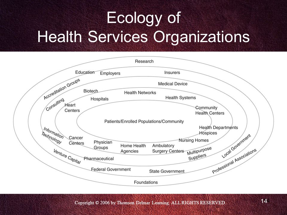 Ecology of Health Services Organizations