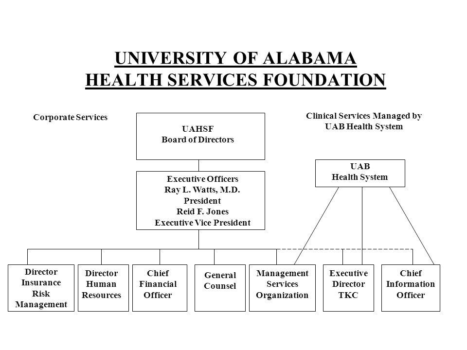 UNIVERSITY OF ALABAMA HEALTH SERVICES FOUNDATION