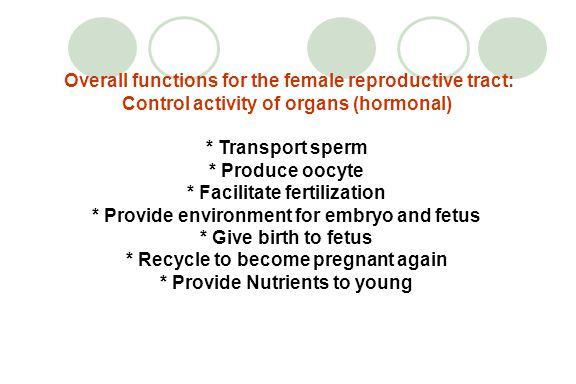 Overall functions for the female reproductive tract: