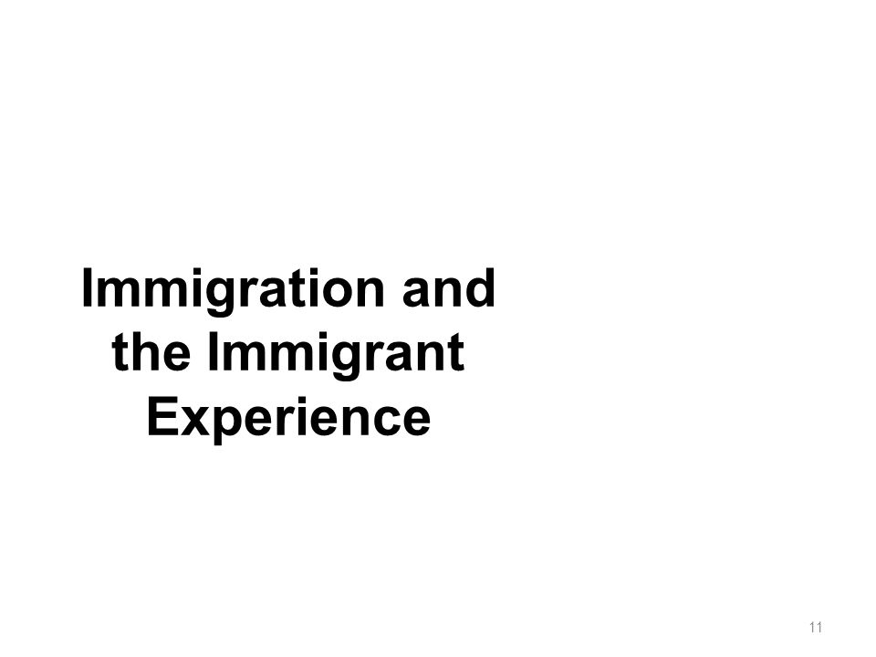 Immigration and the Immigrant Experience