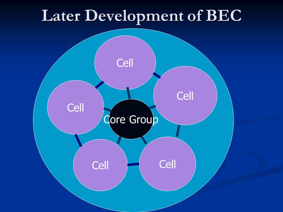 Later Development of BEC