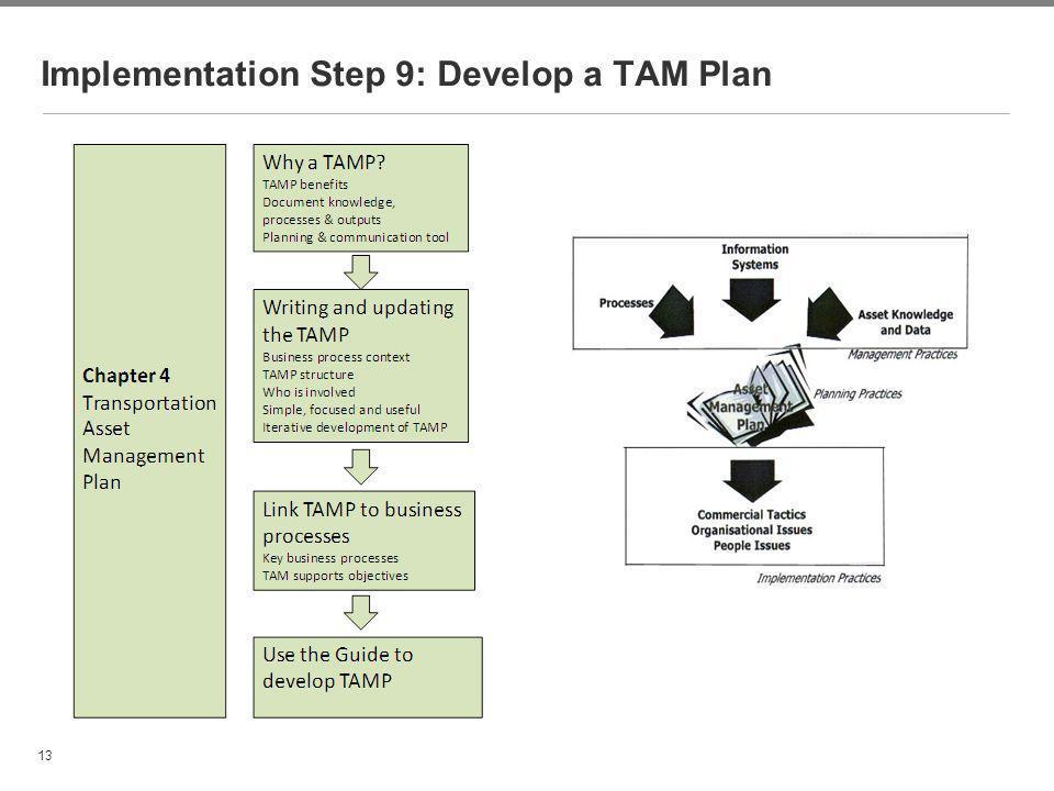 Implementation Step 9: Develop a TAM Plan