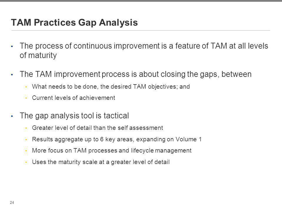 TAM Practices Gap Analysis