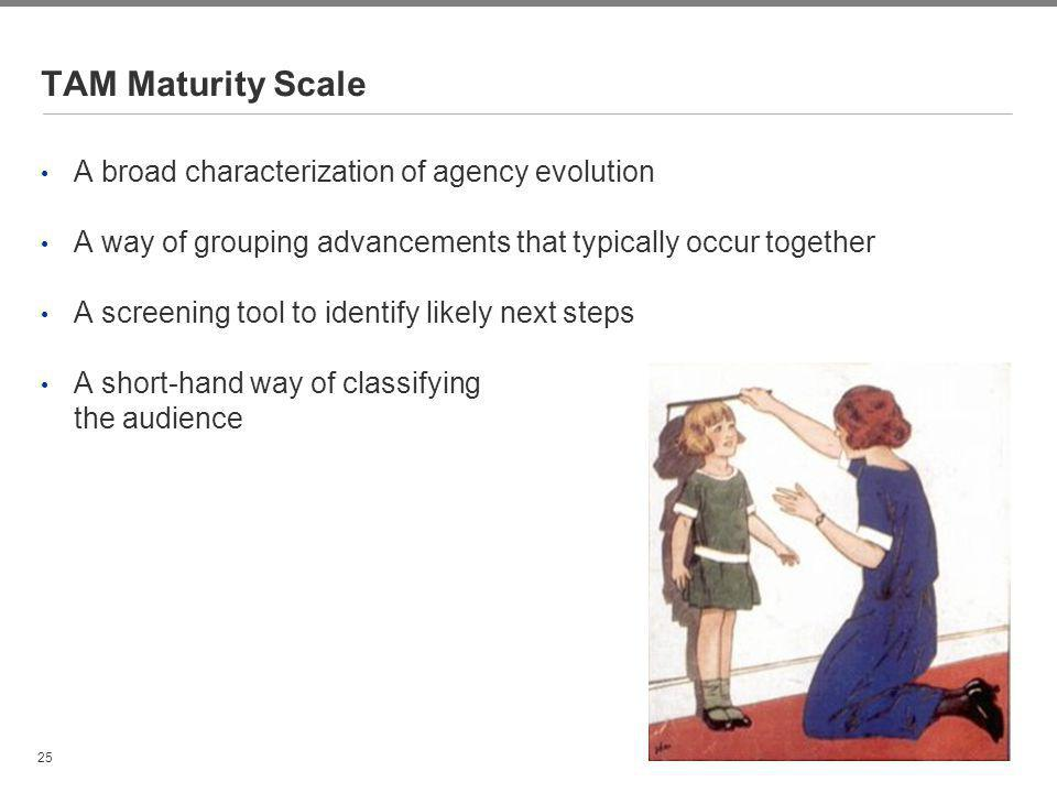 TAM Maturity Scale A broad characterization of agency evolution