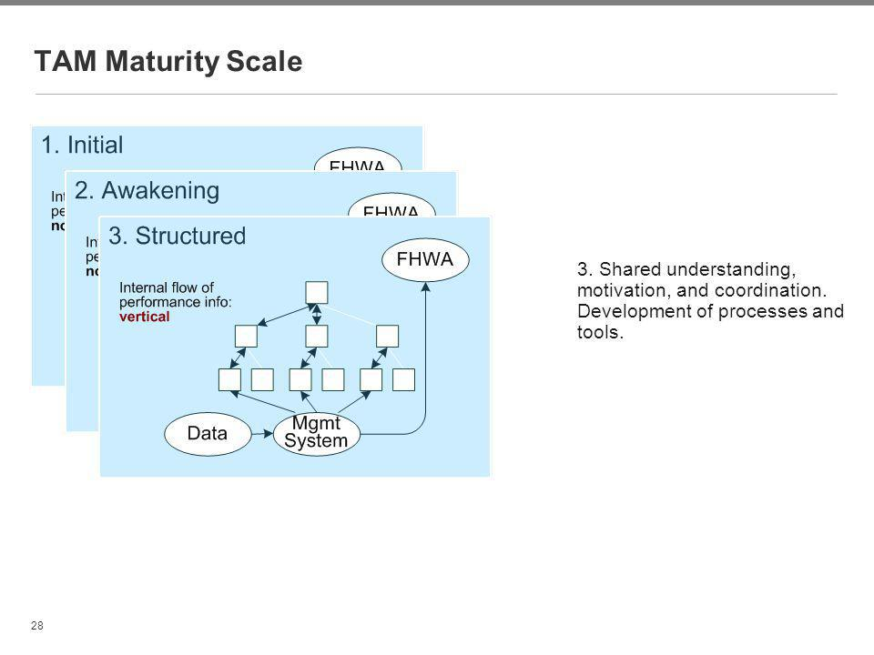 TAM Maturity Scale 3. Shared understanding, motivation, and coordination. Development of processes and tools.