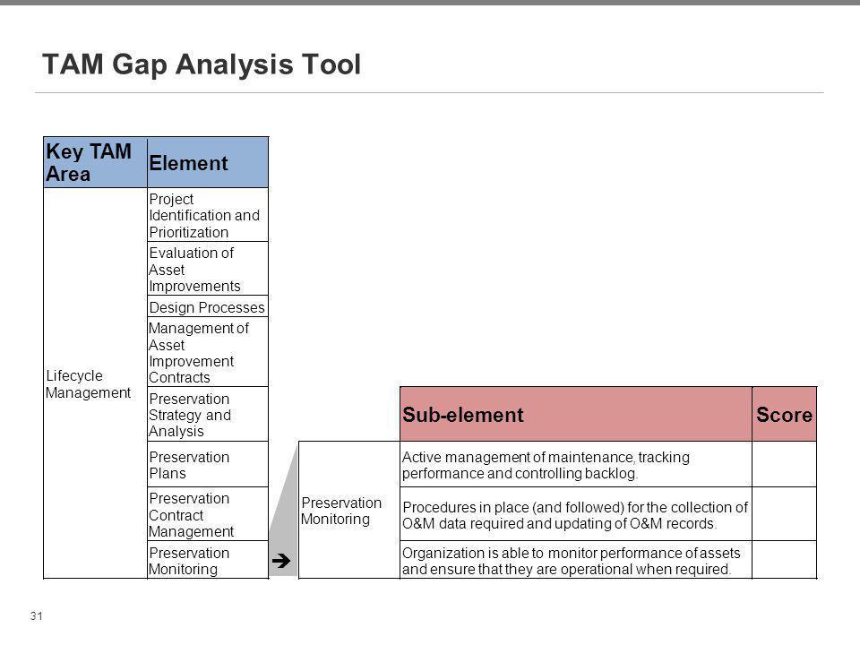 TAM Gap Analysis Tool Key TAM Area Element Sub - element Score è