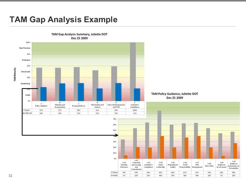 TAM Gap Analysis Example
