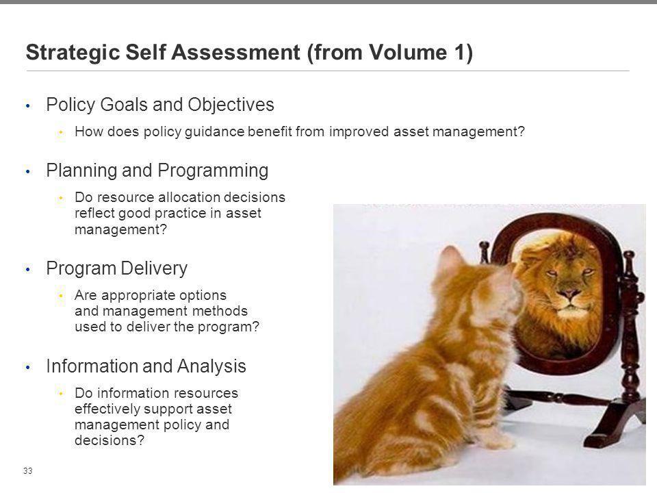 Strategic Self Assessment (from Volume 1)