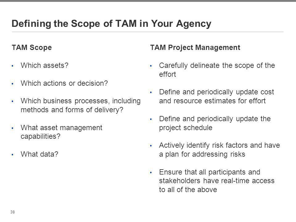 Defining the Scope of TAM in Your Agency