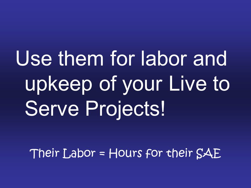 Their Labor = Hours for their SAE