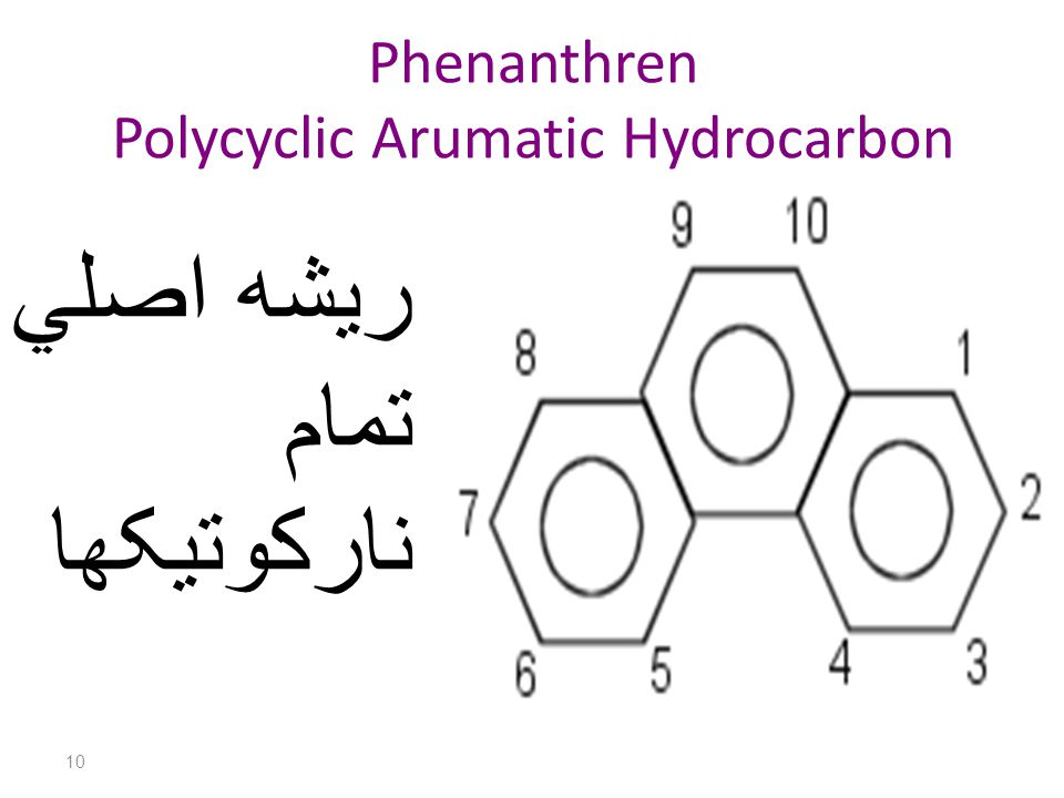Phenanthren Polycyclic Arumatic Hydrocarbon
