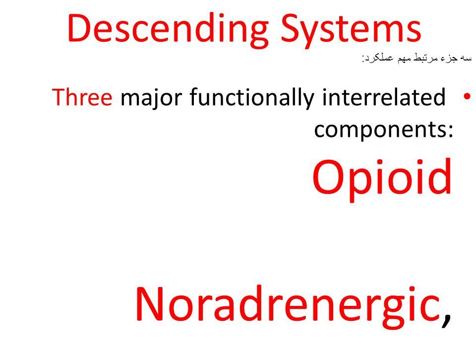 Descending Systems سه جزء مرتبط مهم عملکرد: