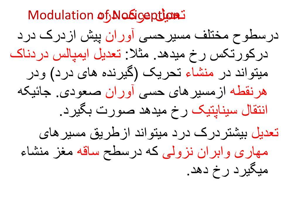 تعدیل درک درد Modulation of Nociception.