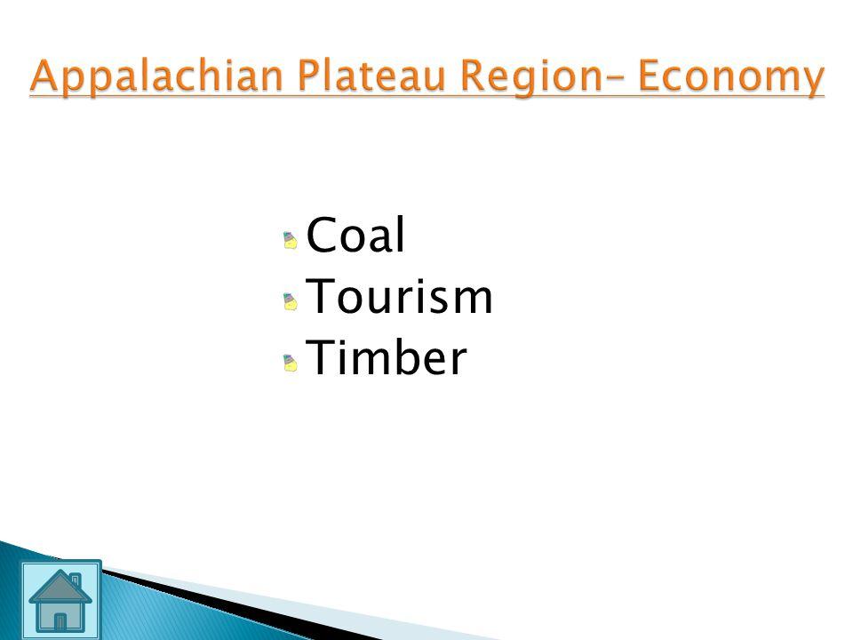 Appalachian Plateau Region– Economy
