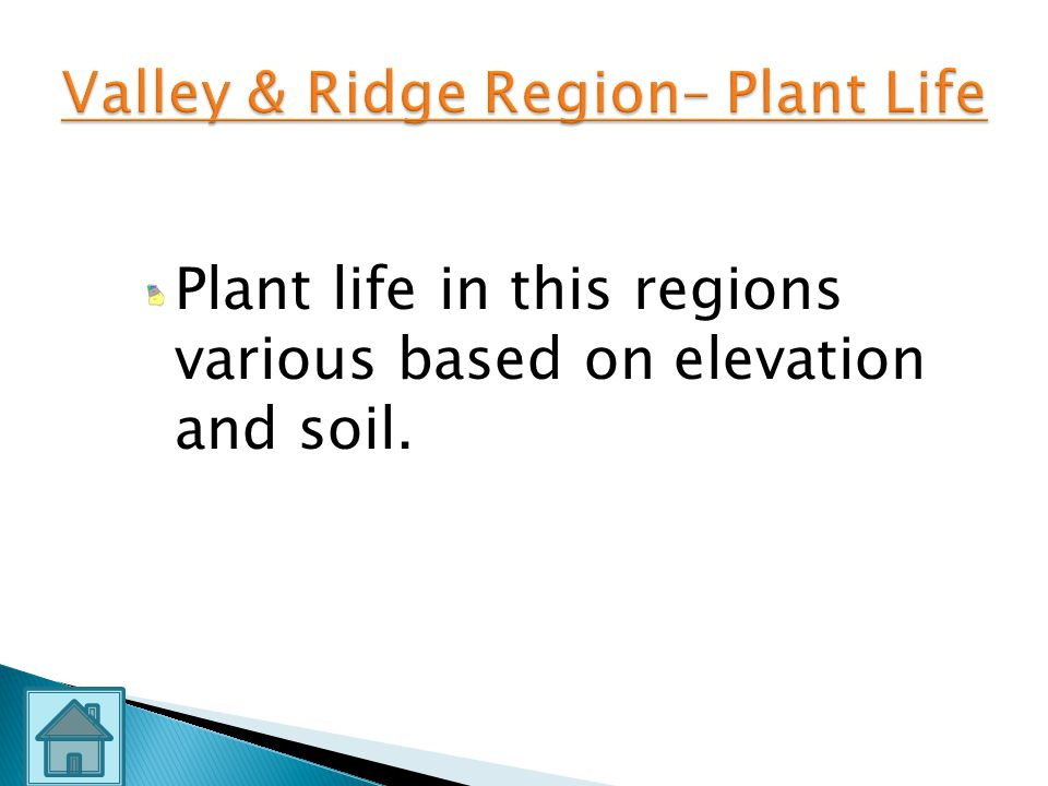 Valley & Ridge Region– Plant Life