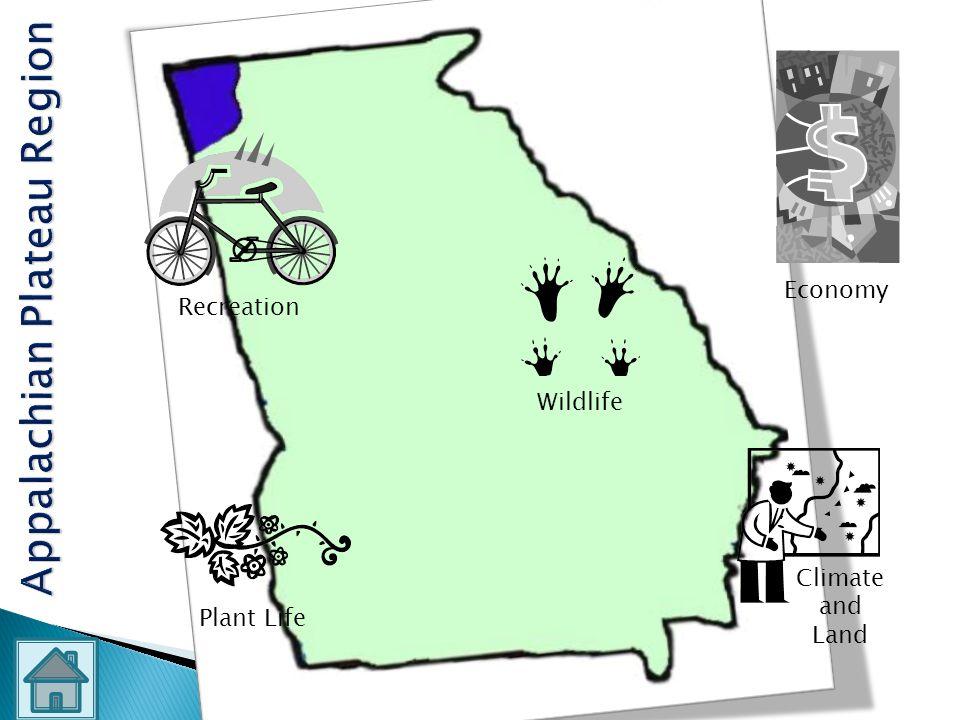 Appalachian Plateau Region