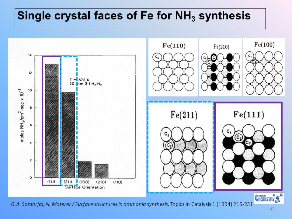 Single crystal faces of Fe for NH3 synthesis