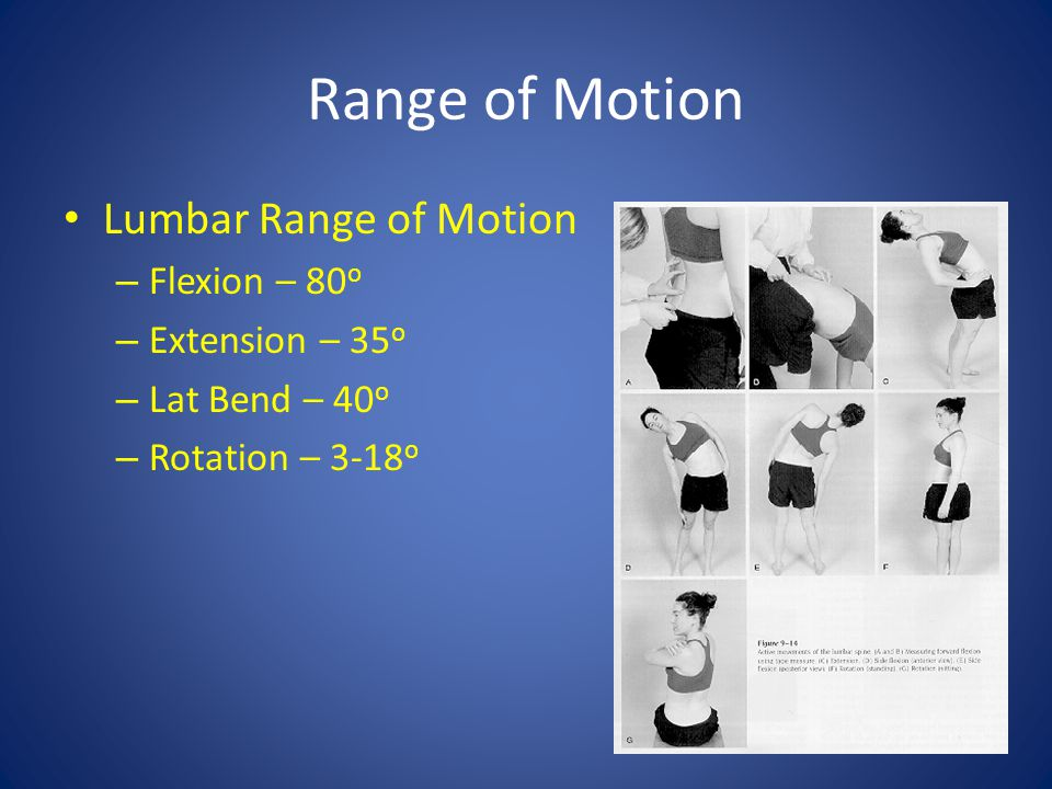 Range of Motion Lumbar Range of Motion Flexion – 80o Extension – 35o