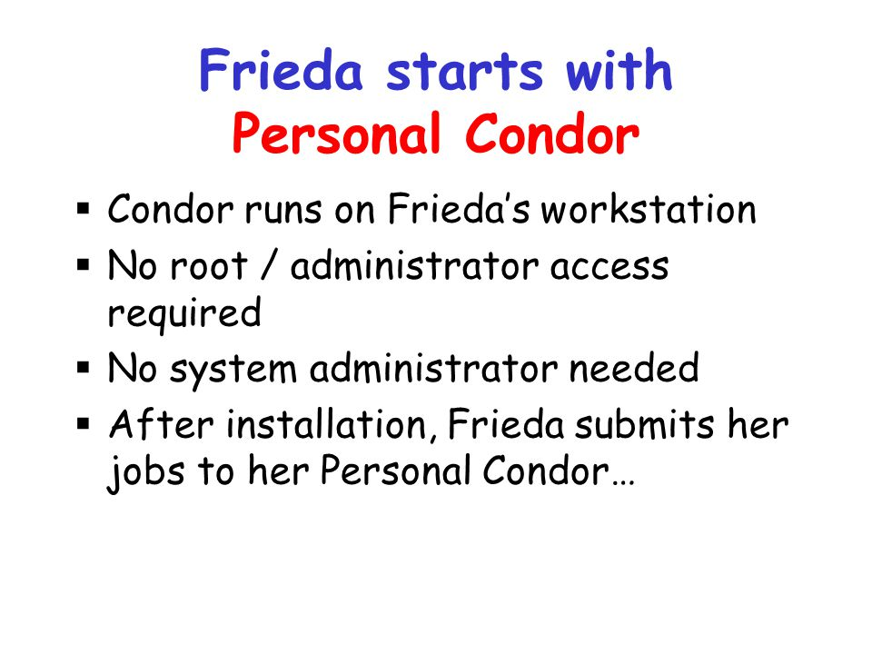 Frieda starts with Personal Condor