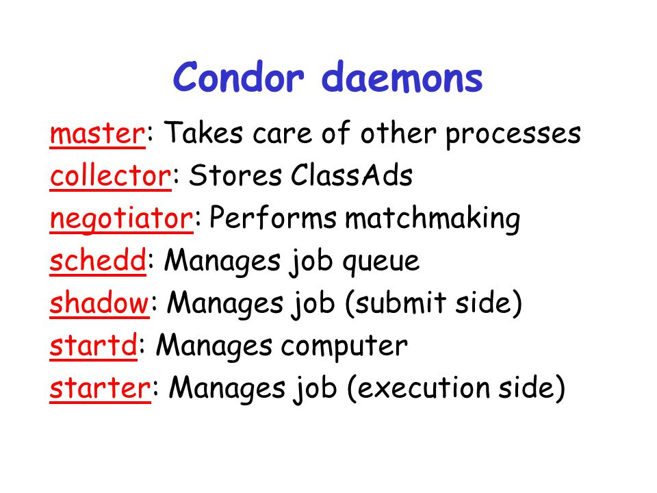 Condor daemons master: Takes care of other processes