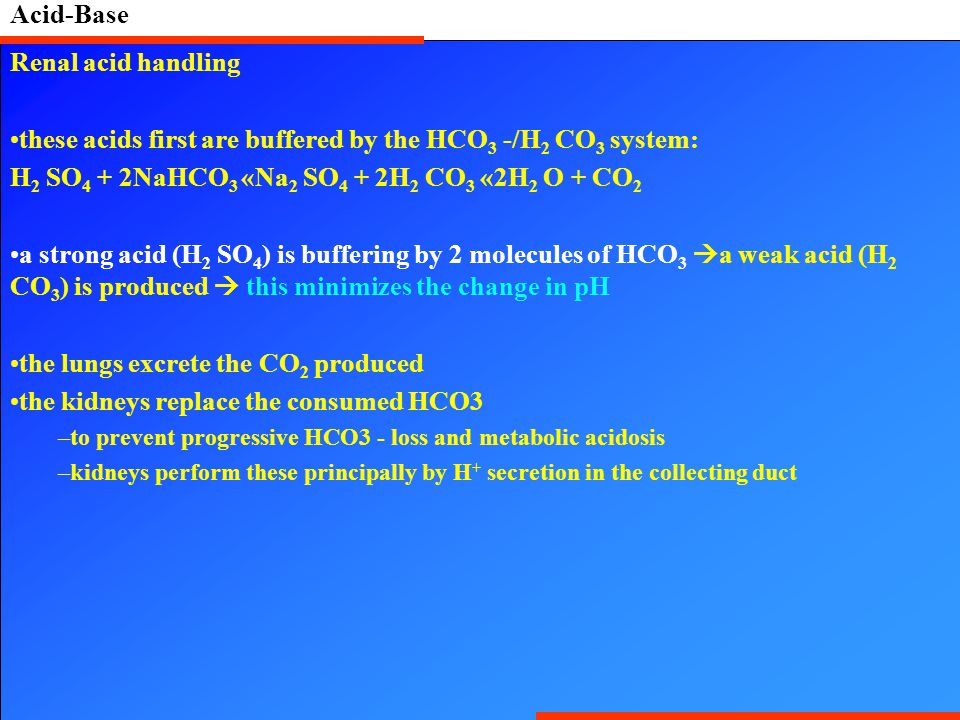these acids first are buffered by the HCO3 -/H2 CO3 system: