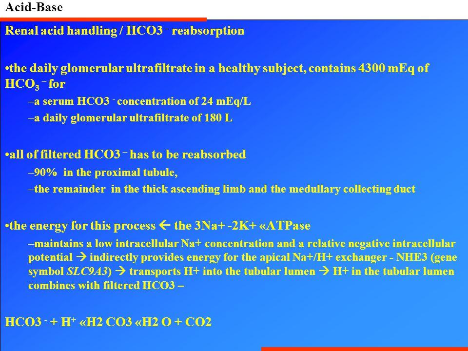 Renal acid handling / HCO3 - reabsorption