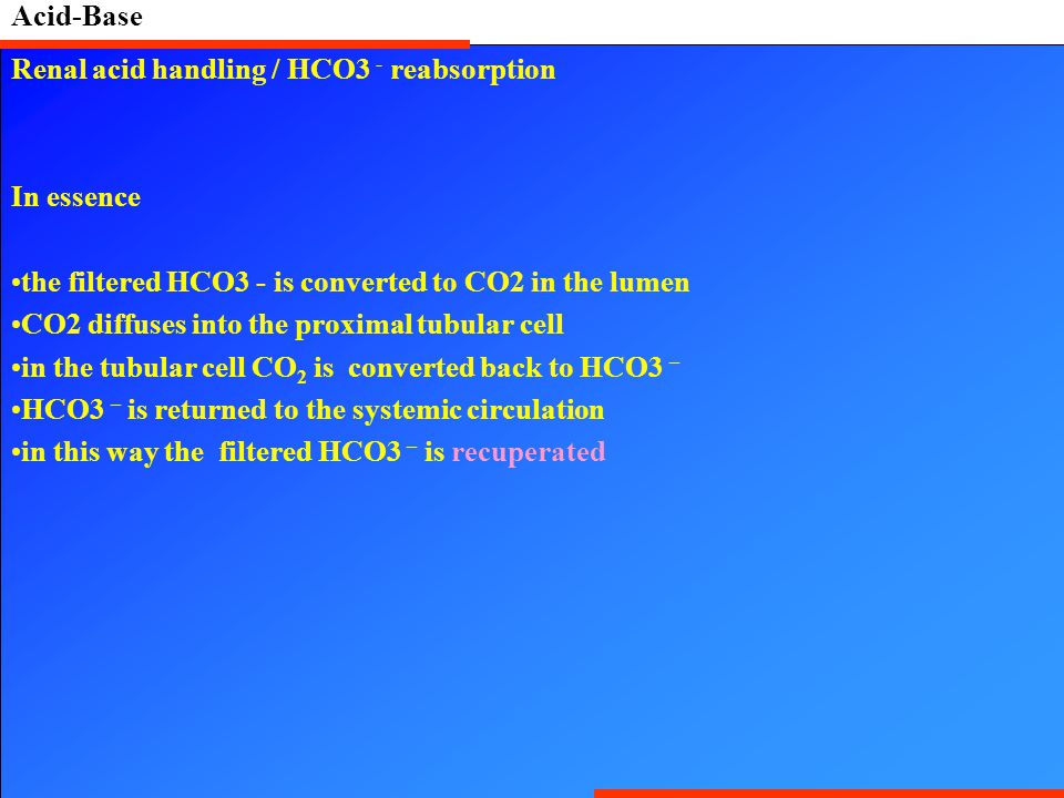 Acid-Base Renal acid handling / HCO3 - reabsorption. In essence. the filtered HCO3 - is converted to CO2 in the lumen.