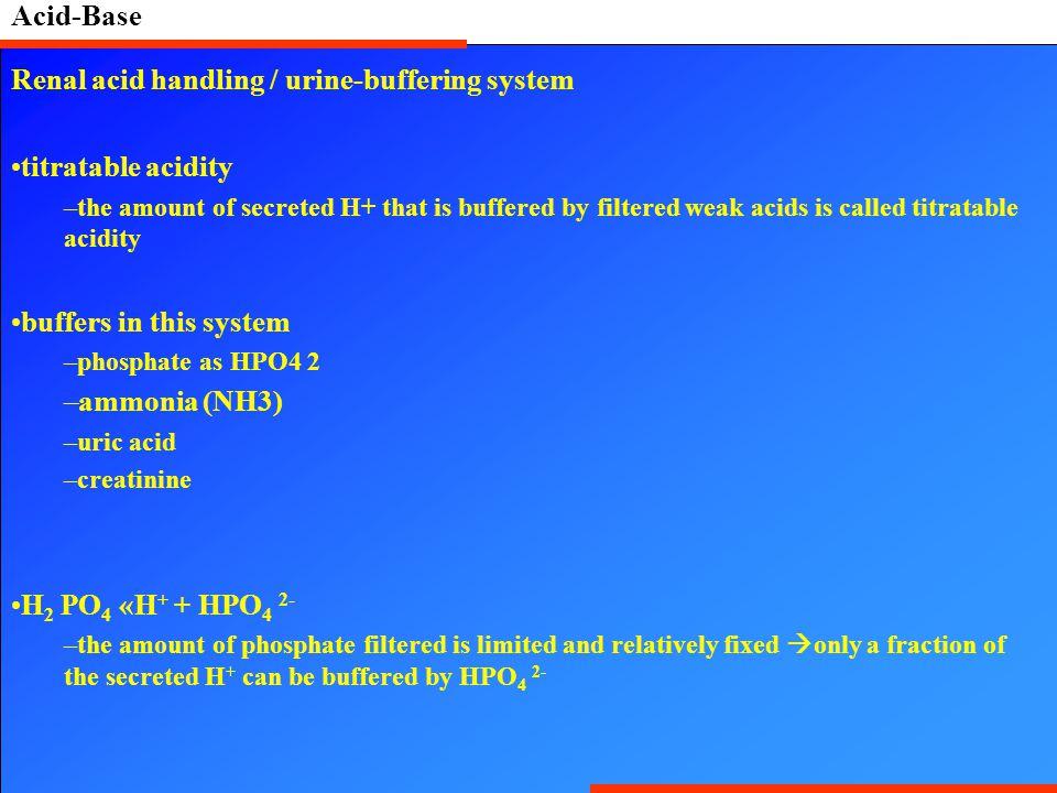 Renal acid handling / urine-buffering system