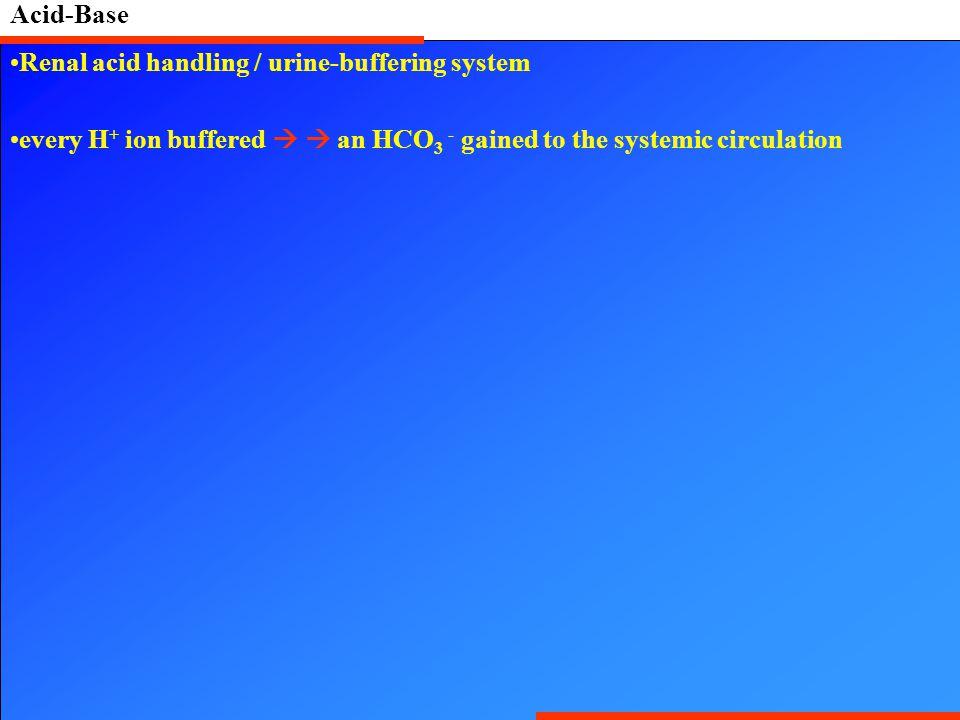 Acid-Base Renal acid handling / urine-buffering system.