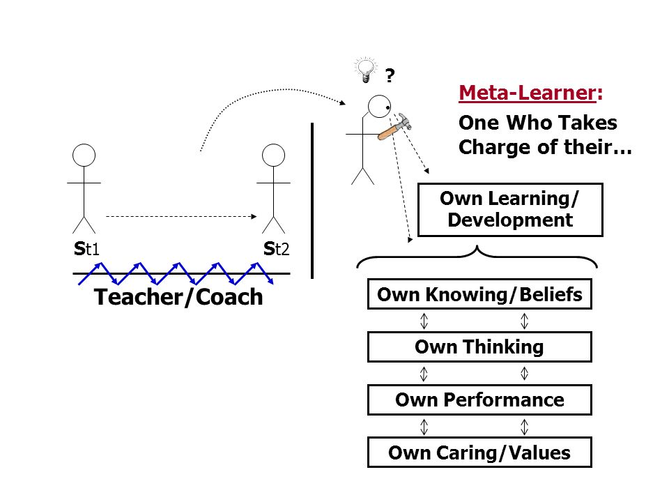 Teacher/Coach Meta-Learner: One Who Takes Charge of their…