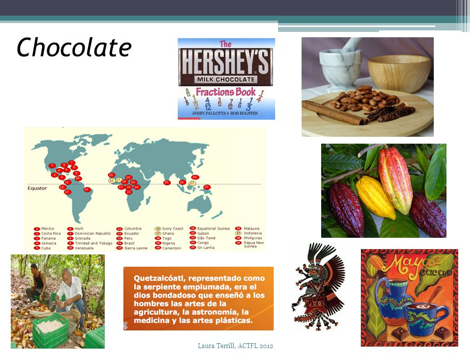 Chocolate Trees – baobab, guanacaste, bamboo