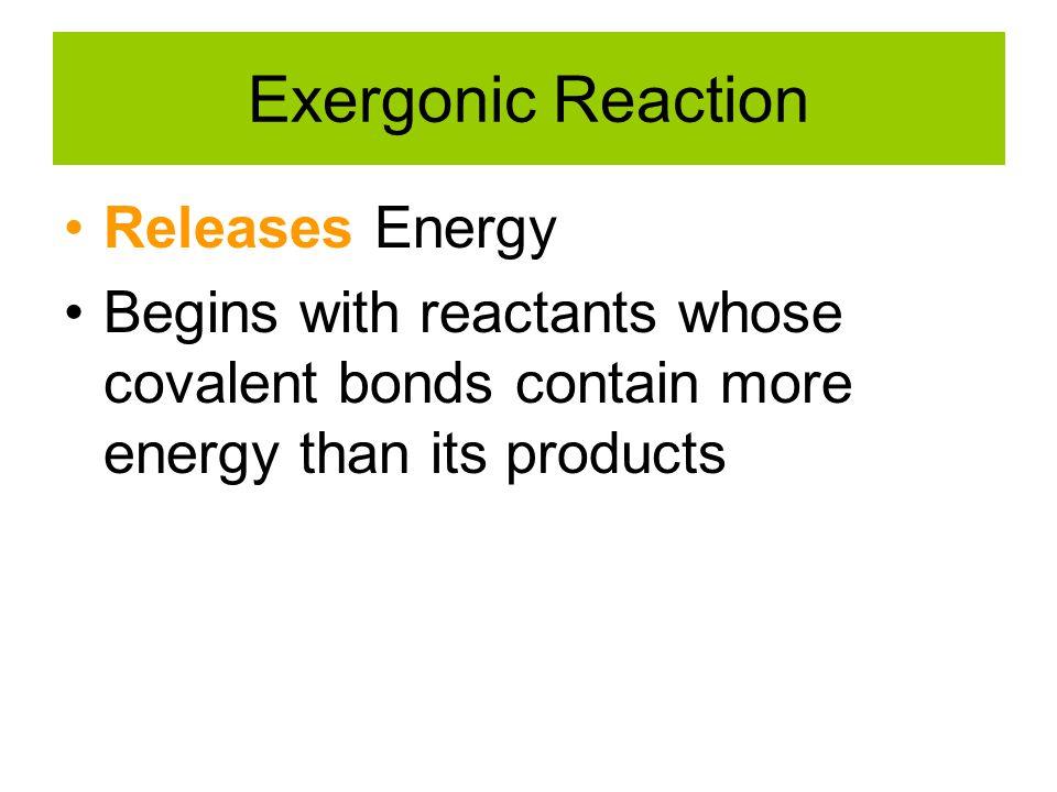 Exergonic Reaction Releases Energy