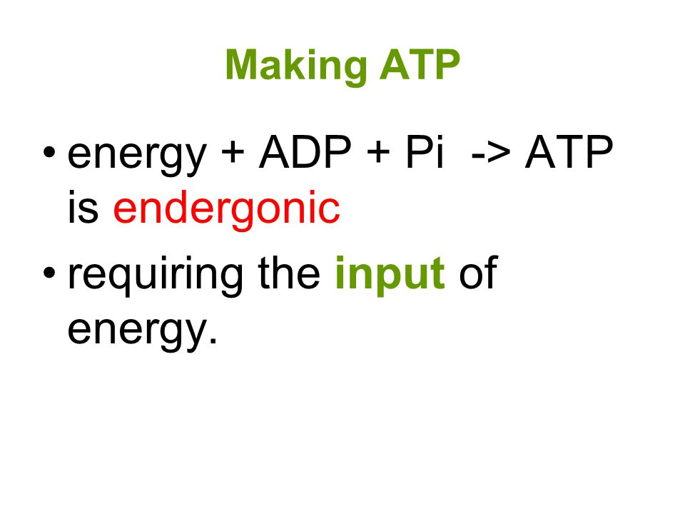 energy + ADP + Pi -> ATP is endergonic