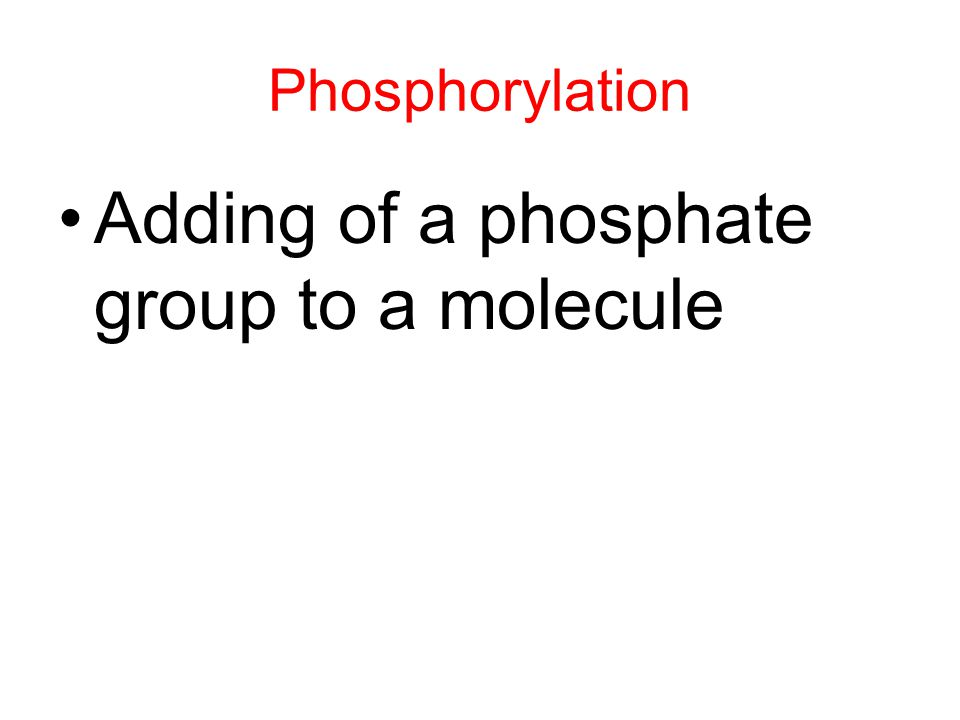 Adding of a phosphate group to a molecule