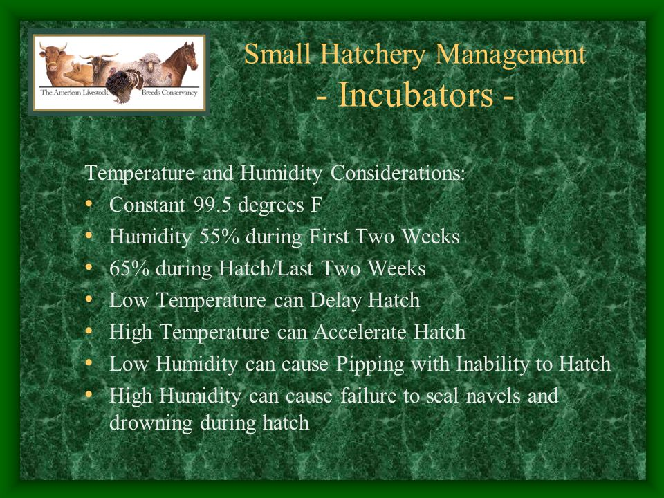 Small Hatchery Management - Incubators -