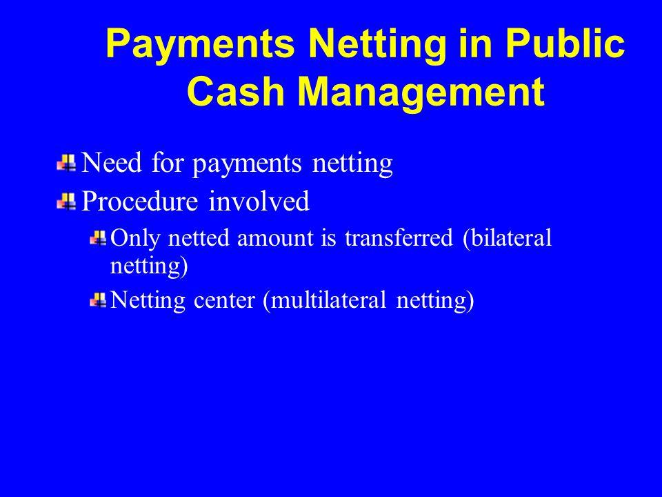 Payments Netting in Public Cash Management