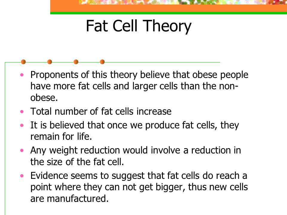 Fat Cell Theory Proponents of this theory believe that obese people have more fat cells and larger cells than the non-obese.