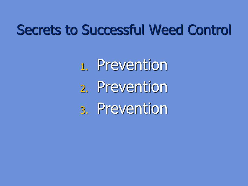 Secrets to Successful Weed Control