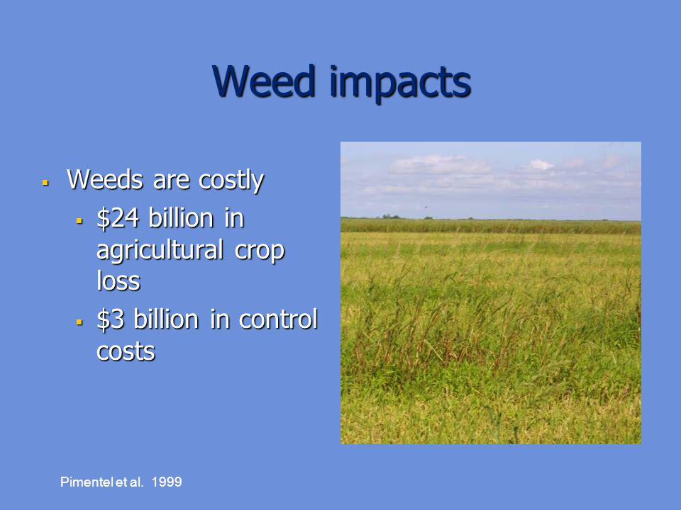 Weed impacts Weeds are costly $24 billion in agricultural crop loss
