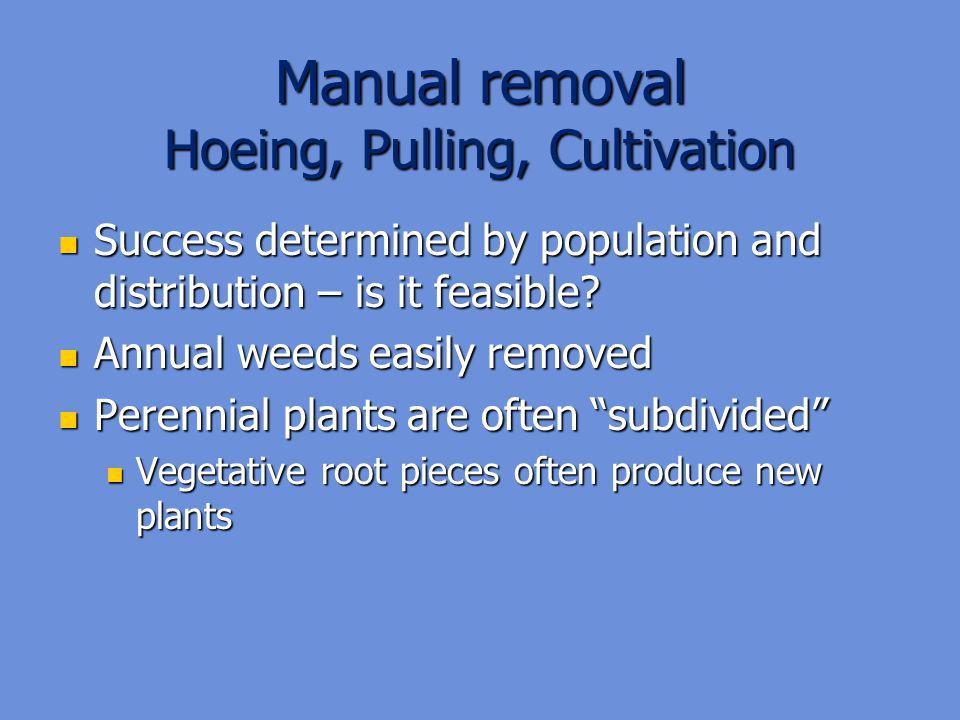 Manual removal Hoeing, Pulling, Cultivation